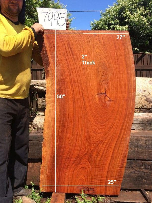 "Jatoba / Brazilian Cherry #7995- 2"" x 25"" to 27"" x 50"" FREE SHIPPING within the Contiguous US. - Big Wood Slabs"