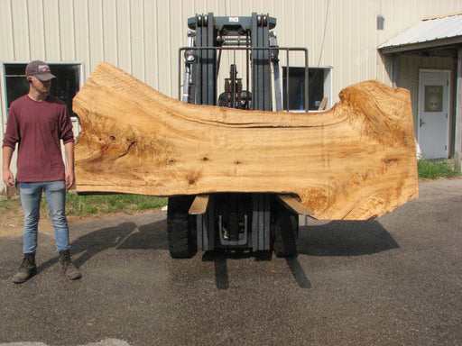"Cottonwood #7614(ROC) - 2-1/4"" x 25"" to 45"" x 110"" FREE SHIPPING within the Contiguous US. - Big Wood Slabs"
