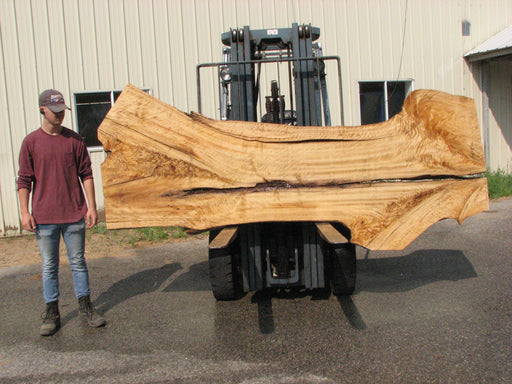"Cottonwood #7615(ROC) - 2-3/4"" x 26"" to 42"" x 111"" FREE SHIPPING within the Contiguous US. - Big Wood Slabs"