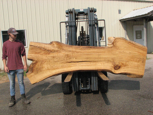 "Cottonwood #7616(ROC) - 2-1/2"" x 19"" to 39"" x 109"" FREE SHIPPING within the Contiguous US. - Big Wood Slabs"