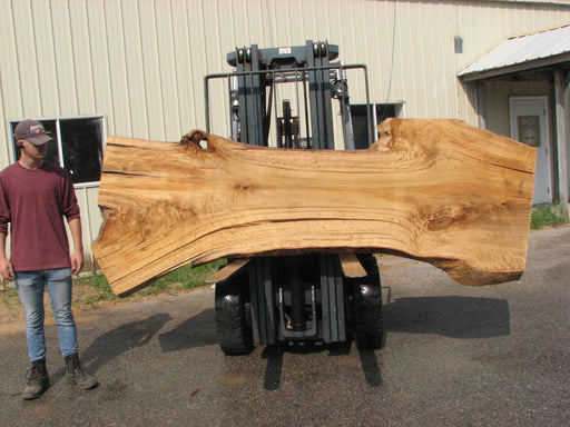 "Cottonwood #7617(ROC) - 2-3/4"" x 24"" to 41"" x 109"" FREE SHIPPING within the Contiguous US. - Big Wood Slabs"