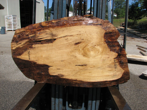 "Cottonwood #7630(ROC) - 1-1/2"" x 24"" x 51"" FREE SHIPPING within the Contiguous US. - Big Wood Slabs"