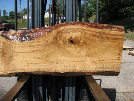 "Cottonwood #7634(ROC) - 2-1/2"" to 3"" x 15"" to 28"" x 61"" FREE SHIPPING within the Contiguous US."