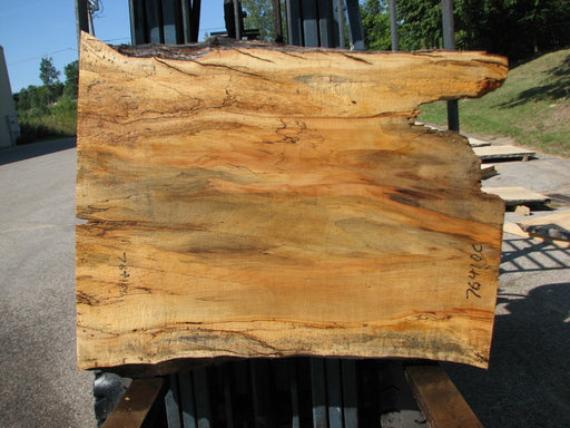 "Maple, Spalted #7641(ROC) - 2-1/2"" x 32"" to 37"" x 46"" FREE SHIPPING within the Contiguous US. - Big Wood Slabs"
