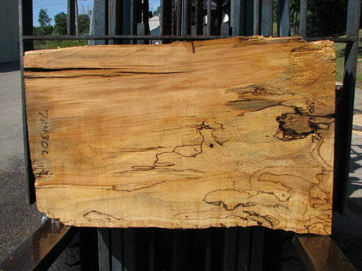 "Maple, Spalted #7643(ROC) - 2-1/2"" x 19"" to 24"" x 36"" FREE SHIPPING within the Contiguous US. - Big Wood Slabs"
