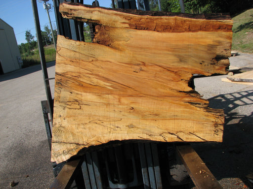 "Maple, Spalted #7647(ROC) - 4"" x 32"" to 44"" x 46"" FREE SHIPPING within the Contiguous US. - Big Wood Slabs"