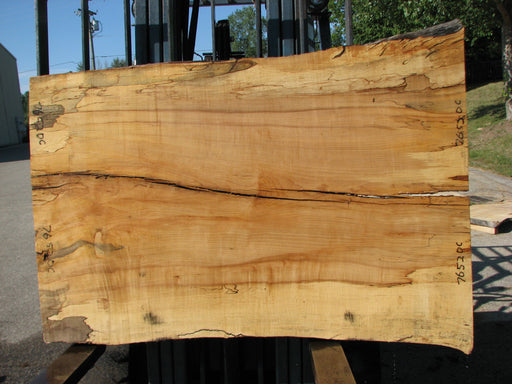 "Maple, Spalted #7652(ROC) - 1-1/2"" x 35"" to 41"" x 56"" FREE SHIPPING within the Contiguous US. - Big Wood Slabs"