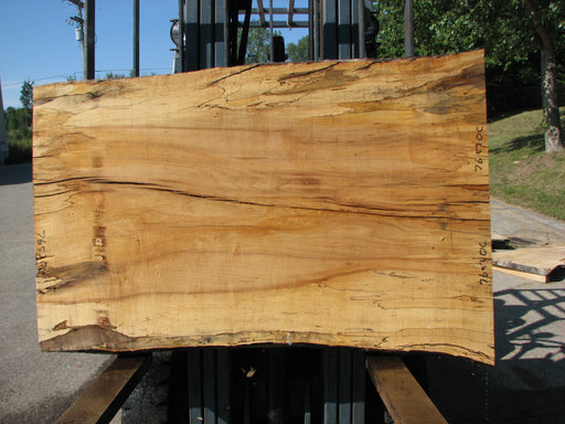 "Maple, Spalted #7653(ROC) - 2-1/2"" x 33"" to 39"" x 56"" FREE SHIPPING within the Contiguous US. - Big Wood Slabs"