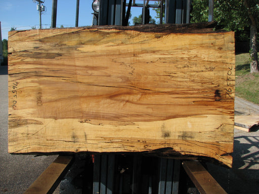 "Maple, Spalted #7655(ROC) - 2-1/2"" x 28"" to 34"" x 56"" FREE SHIPPING within the Contiguous US. - Big Wood Slabs"