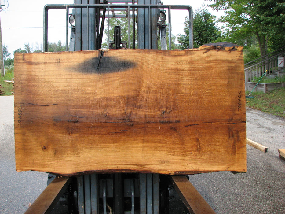 "Oak, White #7664(ROC) - 2-1/2"" x 32"" - 35"" x 63"" FREE SHIPPING within the Contiguous US. - Big Wood Slabs"
