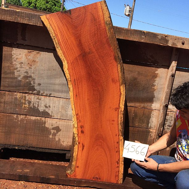 "Cumaru / Brazilian Teak - 2-3/4"" x 18"" x 55"" - Big Wood Slabs"
