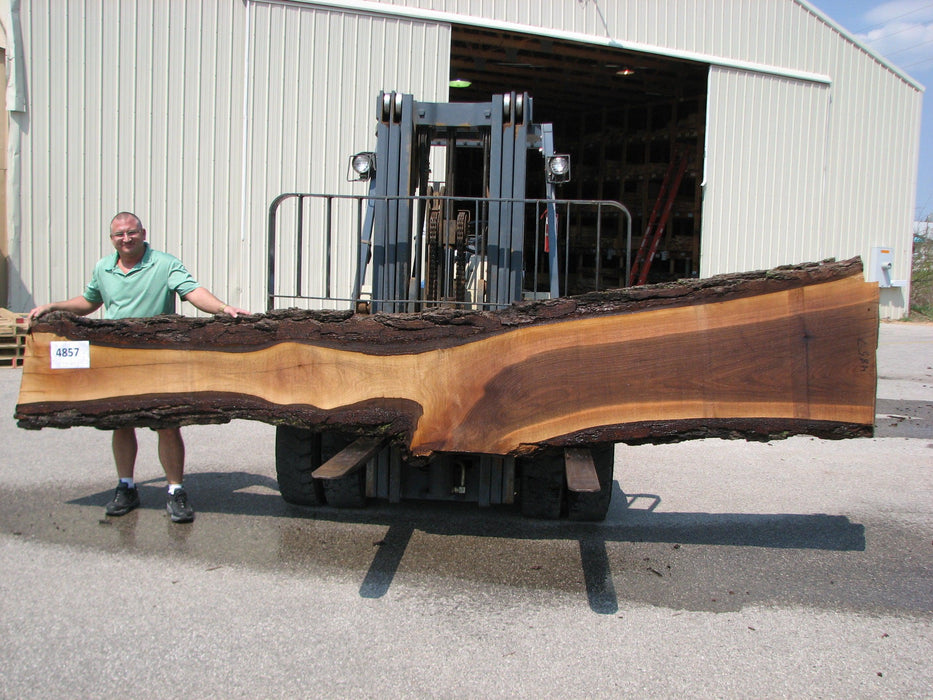 "Walnut, American #4857 - 3-1/2"" x 8"" to 29"" x 168"" FREE SHIPPING within the Contiguous US. - Big Wood Slabs"