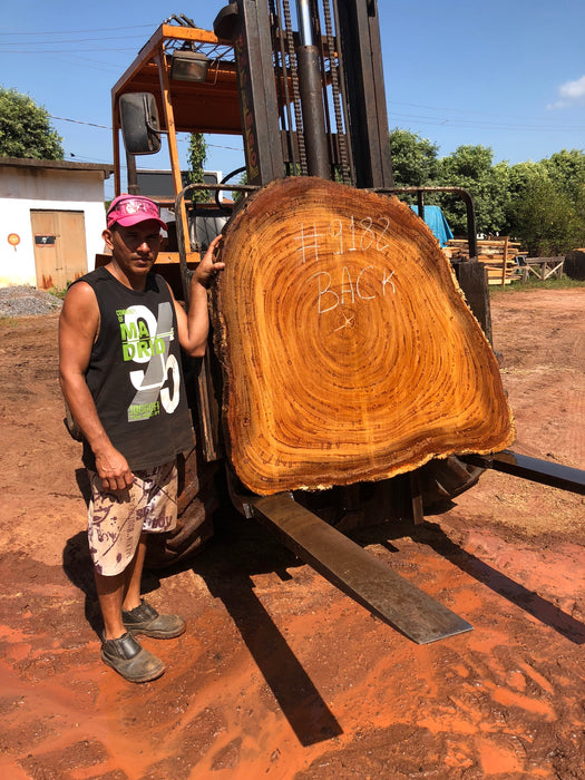 "Angelim Pedra #9182 - 3-1/4"" x 15"" to 48"" x 51"" FREE SHIPPING within the Contiguous US. - Big Wood Slabs"