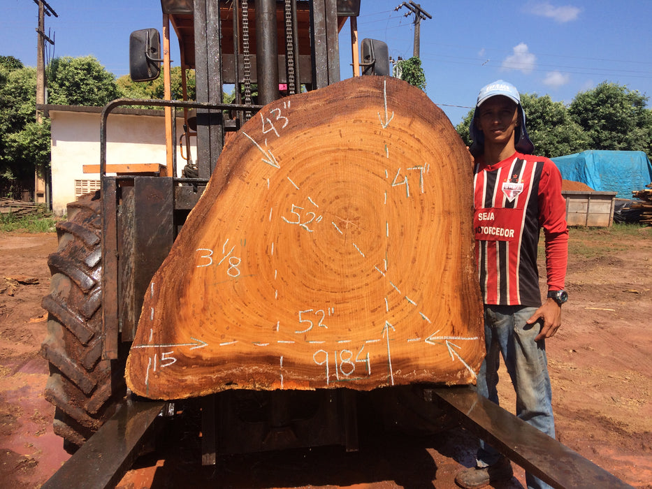 "Angelim Pedra #9184 - 3-1/8"" x 15"" to 47"" x 52"" FREE SHIPPING within the Contiguous US. - Big Wood Slabs"