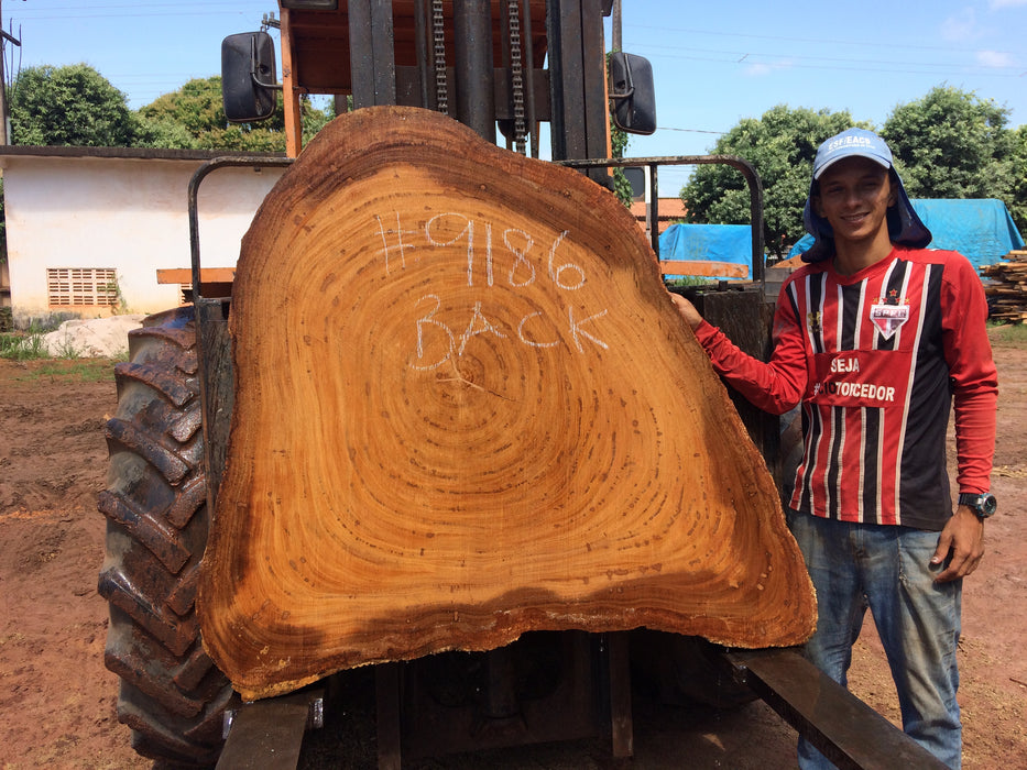 "Angelim Pedra #9186 - 3-1/4"" x 17"" to 48"" x 54"" FREE SHIPPING within the Contiguous US. - Big Wood Slabs"