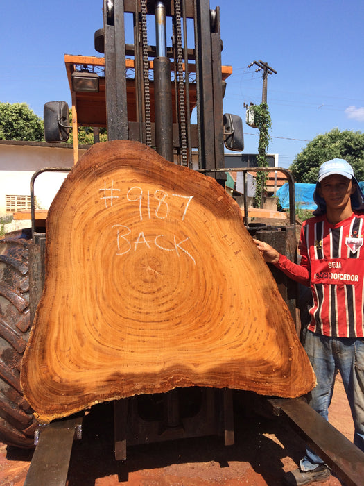 "Angelim Pedra #9187 - 3"" x 15"" to 48"" x 56"" FREE SHIPPING within the Contiguous US. - Big Wood Slabs"