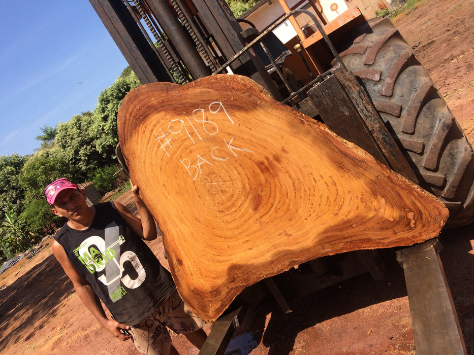 "Angelim Pedra #9189 - 3-1/4"" x 15"" to 49"" x 59"" FREE SHIPPING within the Contiguous US. - Big Wood Slabs"