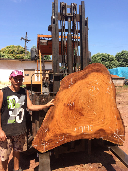 "Angelim Pedra #9190 - 3-1/4"" x 16"" to 49"" x 60"" FREE SHIPPING within the Contiguous US. - Big Wood Slabs"