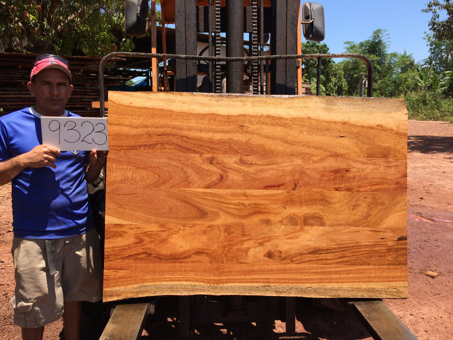 "Goncalo Alves / Tigerwood #9323 - 1-3/4"" x 38"" to 39"" x 57"" FREE SHIPPING within the Contiguous US. - Big Wood Slabs"