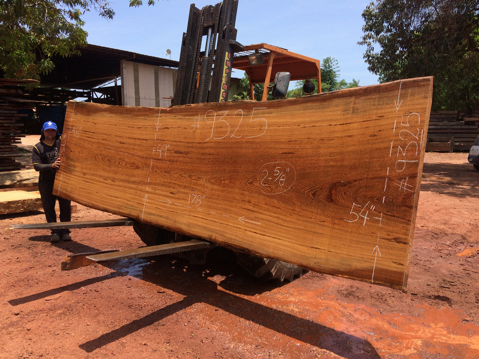 "Angelim Pedra #9325 - 2-5/8"" x 48"" to 54"" x 178"" FREE SHIPPING within the Contiguous US. - Big Wood Slabs"