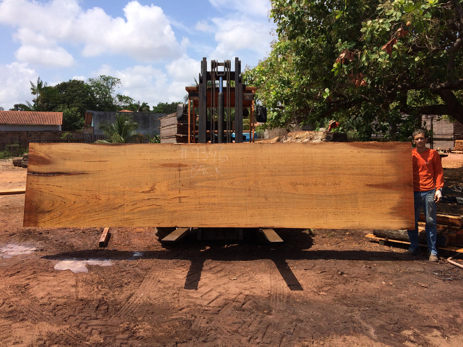 "Angelim Pedra #9346 - 2-1/2"" x 45"" to 47"" x 210"" FREE SHIPPING within the Contiguous US. - Big Wood Slabs"
