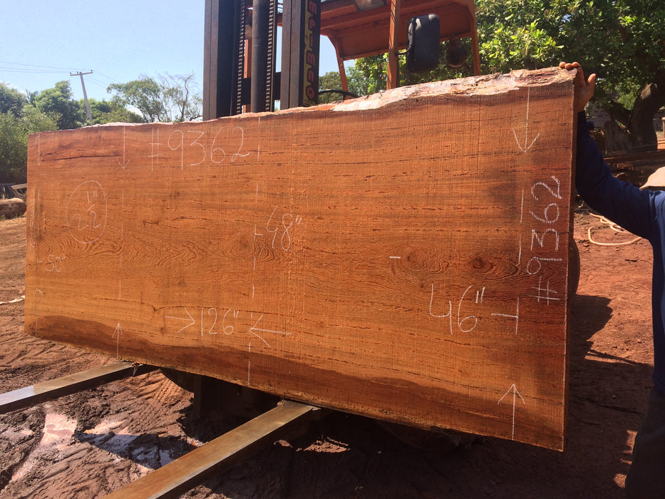 "Angelim Pedra # 9362 - 2-1/2"" x 46"" to 50"" x 126"" FREE SHIPPING within the Contiguous US. - Big Wood Slabs"
