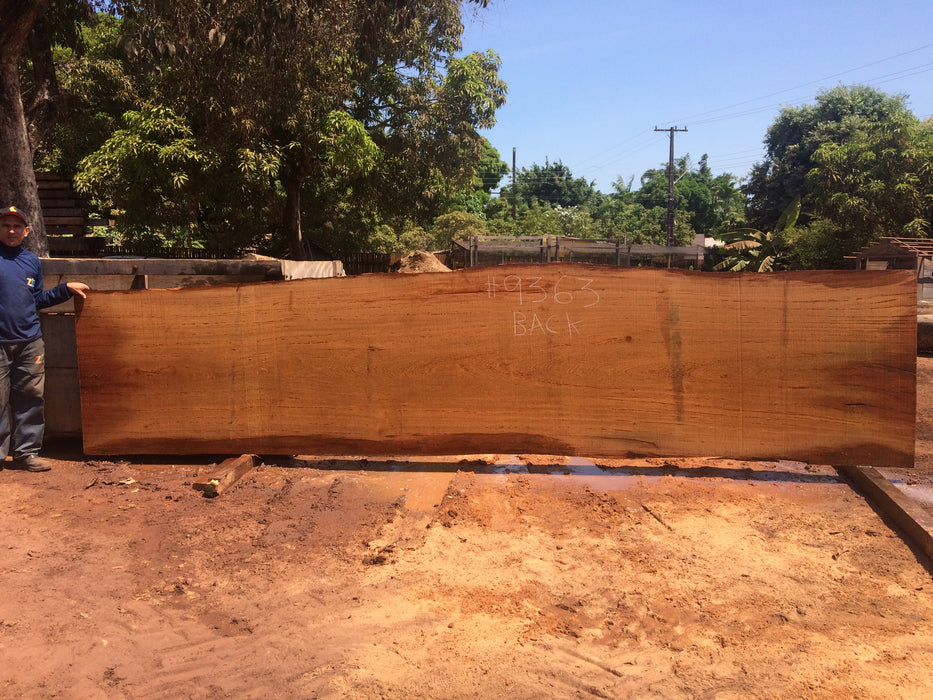 "Angelim Pedra # 9363 - 2-3/4"" x 43"" to 48"" x 210"" FREE SHIPPING within the Contiguous US. - Big Wood Slabs"