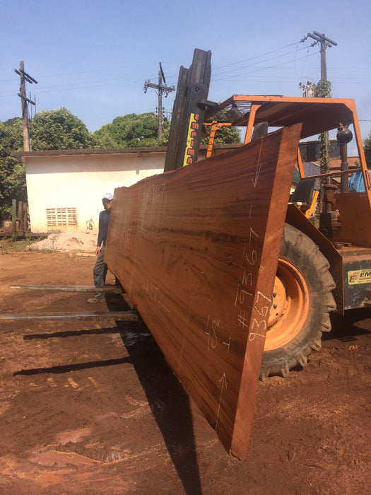 "Angelim Pedra # 9367 - 2-3/4"" x 45"" to 48"" x 207"" FREE SHIPPING within the Contiguous US. - Big Wood Slabs"