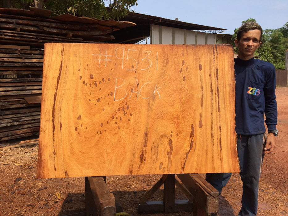 "Angelim Pedra # 9531 - 2-1/4"" x 53"" to 57"" x 36"" FREE SHIPPING within the Contiguous US. - Big Wood Slabs"