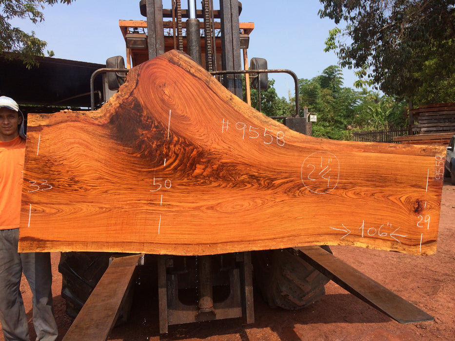 "Jatoba / Brazilian Cherry # 9558 – 2-1/4"" x 29"" to 50"" x 106″ FREE SHIPPING within the Contiguous US. - Big Wood Slabs"
