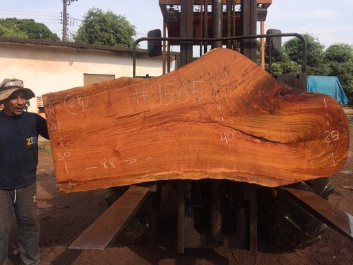 Jatoba-Brazilian Cherry – #9565 - 2-1/4″ x  25″ to 40″ x 88″