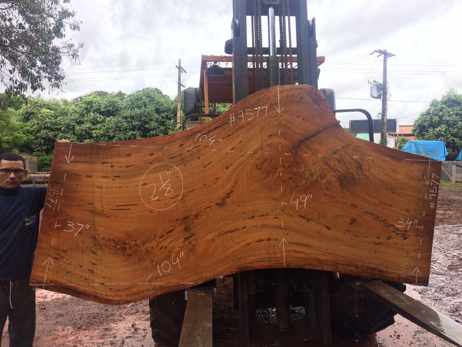 "Angelim Pedra # 9577 - 2-1/8"" x 34"" to 49"" x 104"" FREE SHIPPING within the Contiguous US. - Big Wood Slabs"