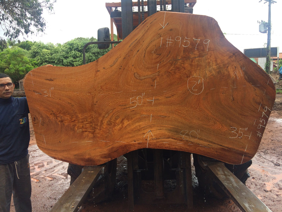 "Angelim Pedra # 9579 - 2-1/8"" x 35"" to 50"" x 85"" FREE SHIPPING within the Contiguous US. - Big Wood Slabs"