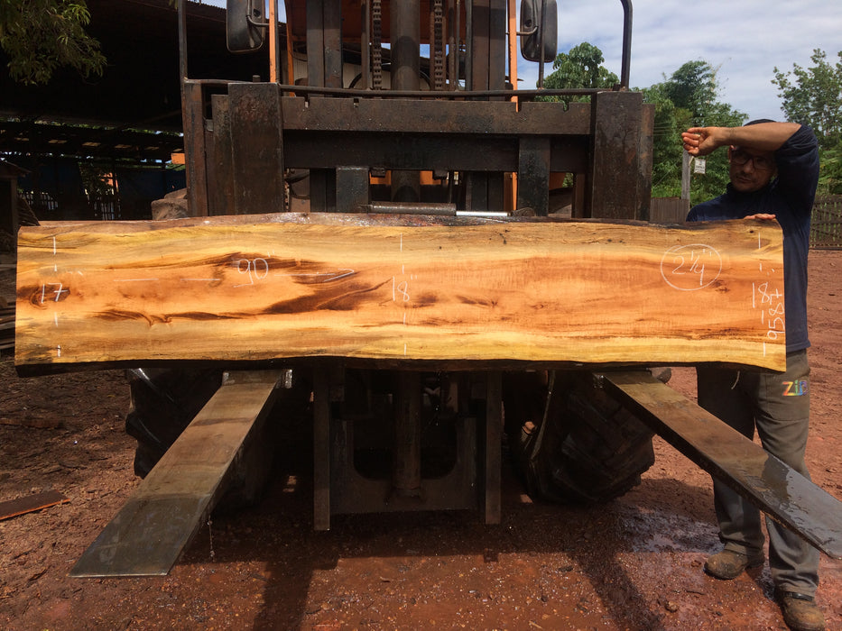 "PRESIDENT'S SALE ITEM - Goncalo Alves / Tigerwood #9587 - 2-1/4"" x 17"" to 18"" x 90"" FREE SHIPPING within the Contiguous US. - Big Wood Slabs"