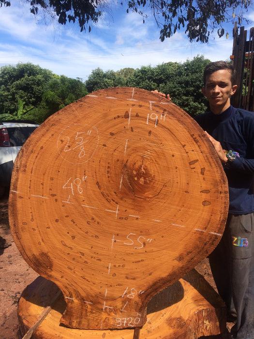"Angelim Pedra # 9720 - 2-5/8"" x 18"" to 48"" x 55"" FREE SHIPPING within the Contiguous US. - Big Wood Slabs"