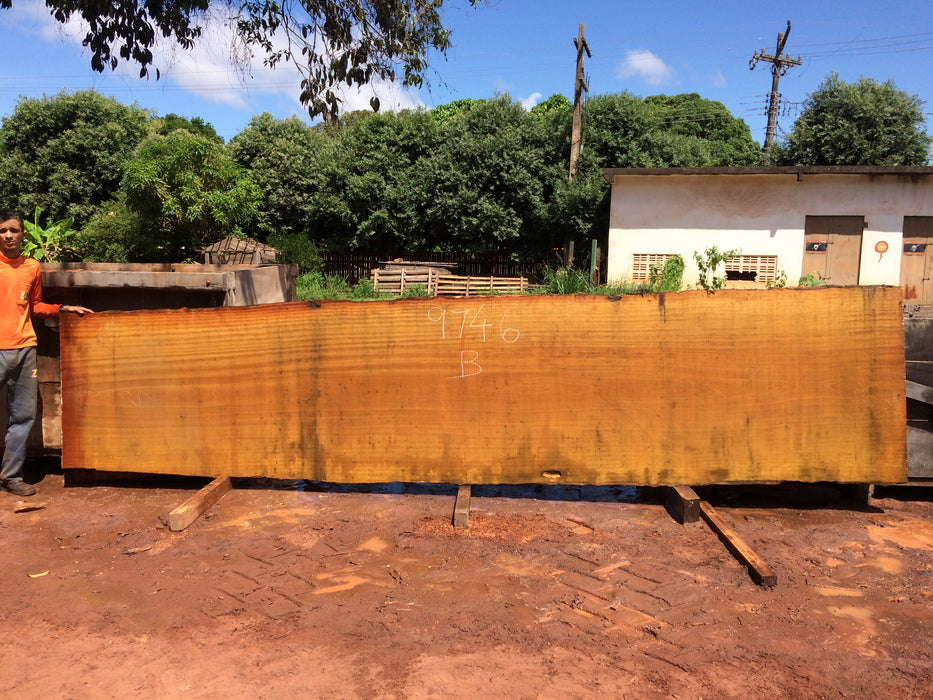 "Tatajuba #9746 - 2-3/4"" x 37"" to 44"" x 205"" FREE SHIPPING within the Contiguous US. - Big Wood Slabs"