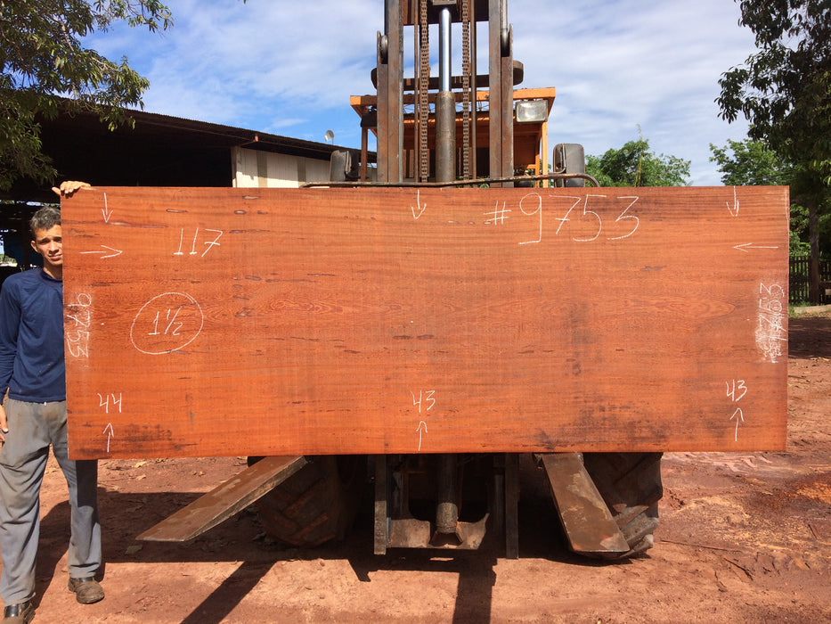 "Angelim Pedra # 9753 - 1-1/2"" x 43"" to 44"" x 117"" FREE SHIPPING within the Contiguous US. - Big Wood Slabs"