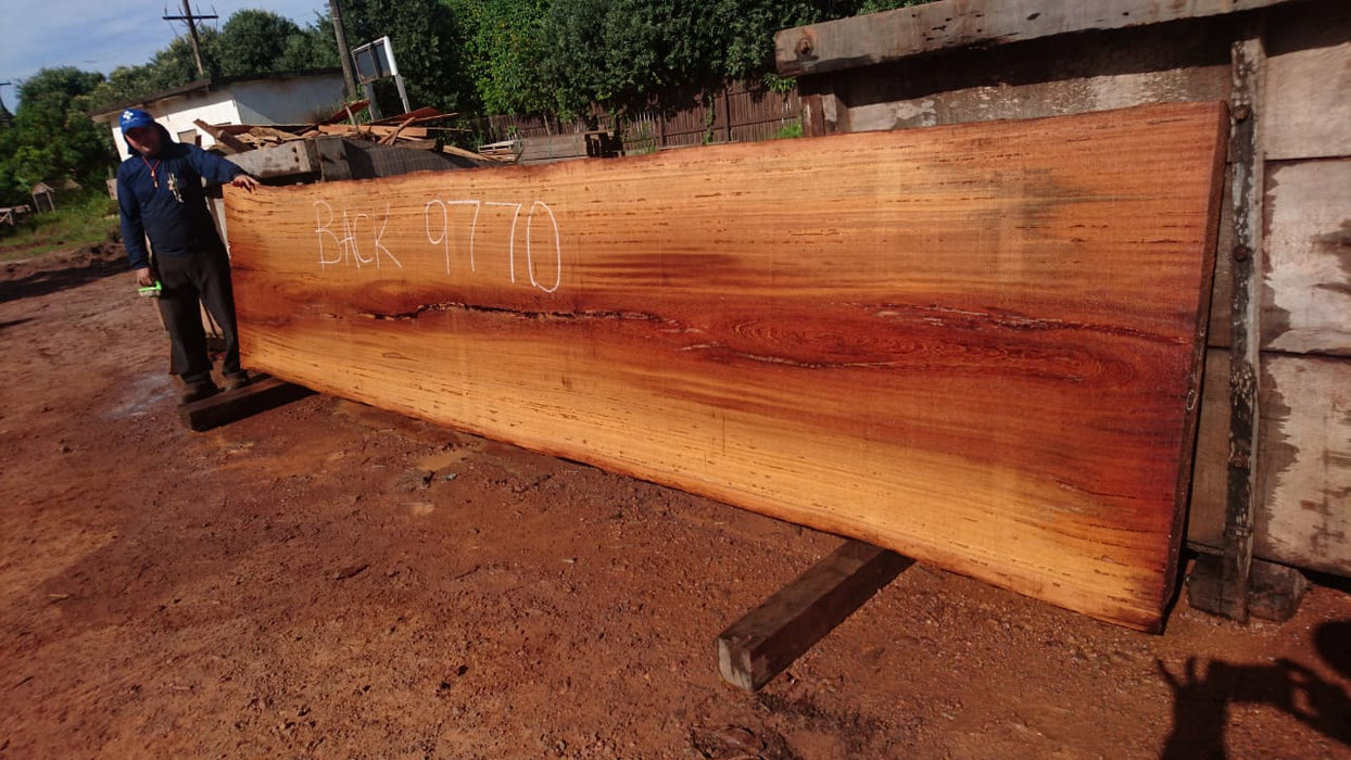 "Angelim Pedra # 9770 - 3-1/8"" x 39"" x 191"" FREE SHIPPING within the Contiguous US. - Big Wood Slabs"