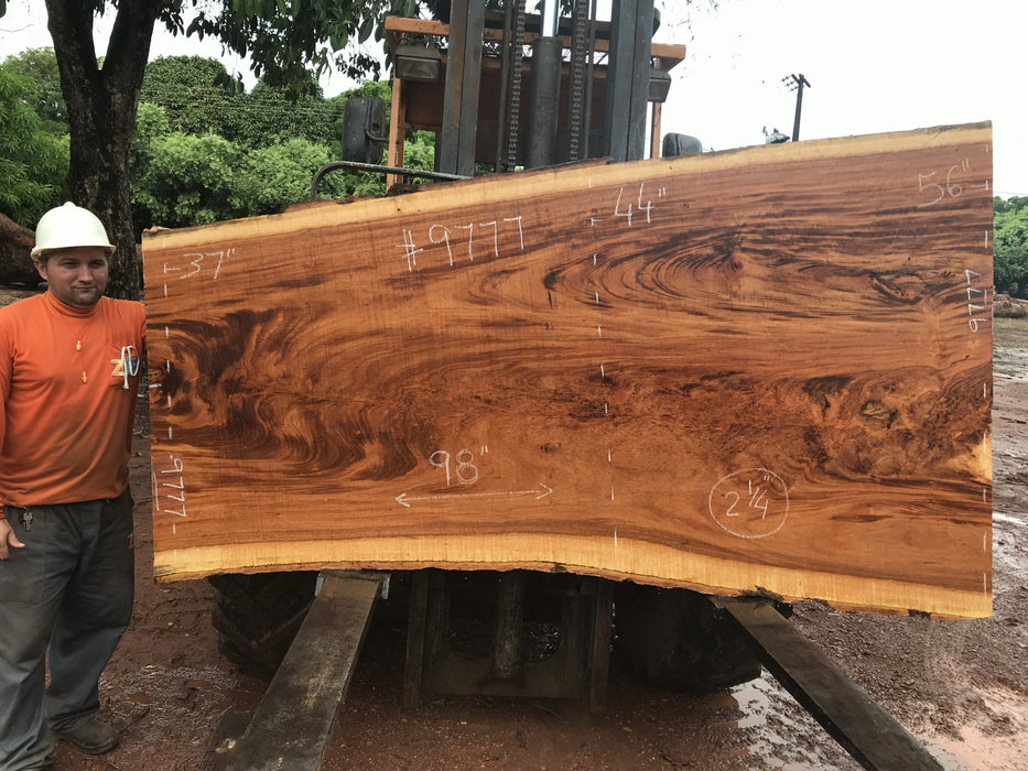 "Goncalo Alves / Tigerwood #9777- 2-1/4"" x 37"" to 56""x 98"" FREE SHIPPING within the Contiguous US. - Big Wood Slabs"