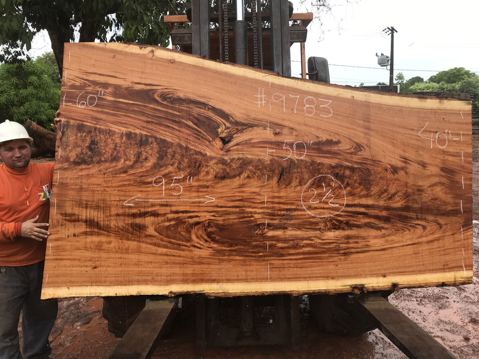 "Goncalo Alves / Tigerwood #9783- 2-1/2"" x 40"" to 60""  x 95"" FREE SHIPPING within the Contiguous US. - Big Wood Slabs"