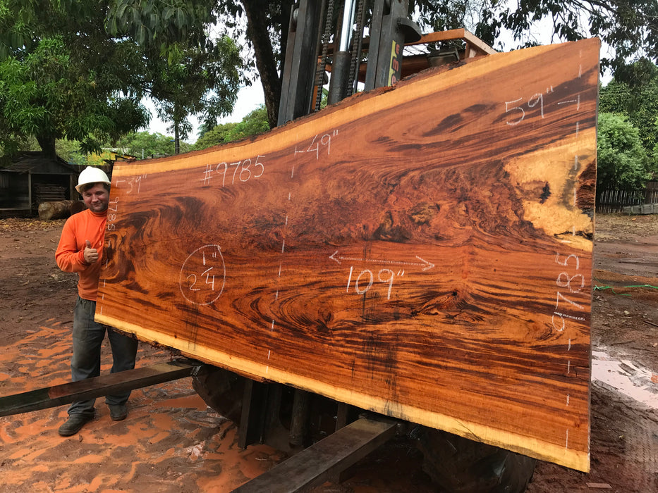 "Goncalo Alves / Tigerwood #9785- 2-1/4"" x 39"" to 59""  x 109"" FREE SHIPPING within the Contiguous US. - Big Wood Slabs"