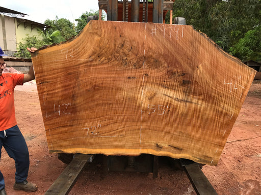 "Pequiá  #9791- 2-1/4 x 41"" to 53"" x 72"" to 93"" FREE SHIPPING within the Contiguous US. - Big Wood Slabs"