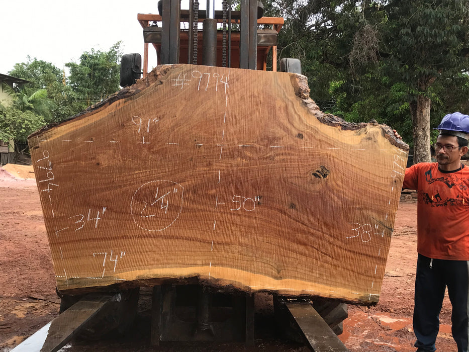 "Pequiá  #9794- 2-1/4 x 34"" to 50"" x 74"" to 91"" FREE SHIPPING within the Contiguous US. - Big Wood Slabs"