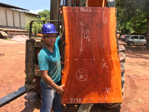 "Goncalo Alves / Tigerwood #9798 - 2-1/4"" x 28"" to 34"" x 53"" FREE SHIPPING within the Contiguous US. - Big Wood Slabs"