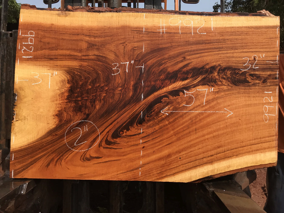 "Goncalo Alves / Tigerwood #9921- 2"" x 32"" to 37"" x 57"" FREE SHIPPING within the Contiguous US. - Big Wood Slabs"