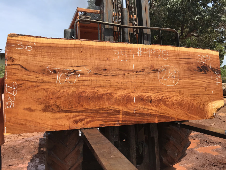 "Goncalo Alves / Tigerwood #9928- 2-1/4"" x 35"" to 36"" x 100"" FREE SHIPPING within the Contiguous US. - Big Wood Slabs"