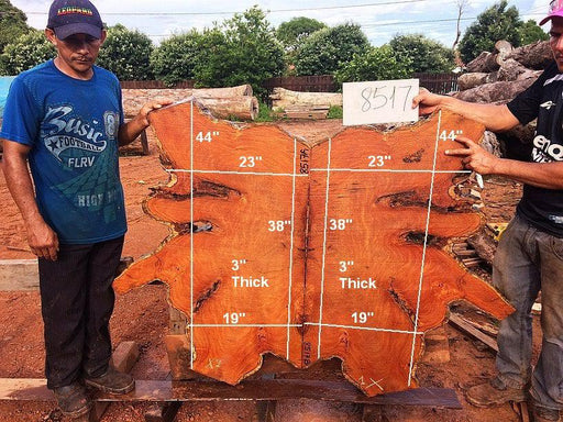 "Garapa - 3"" x 19"" to 23"" x 44"" - Big Wood Slabs"
