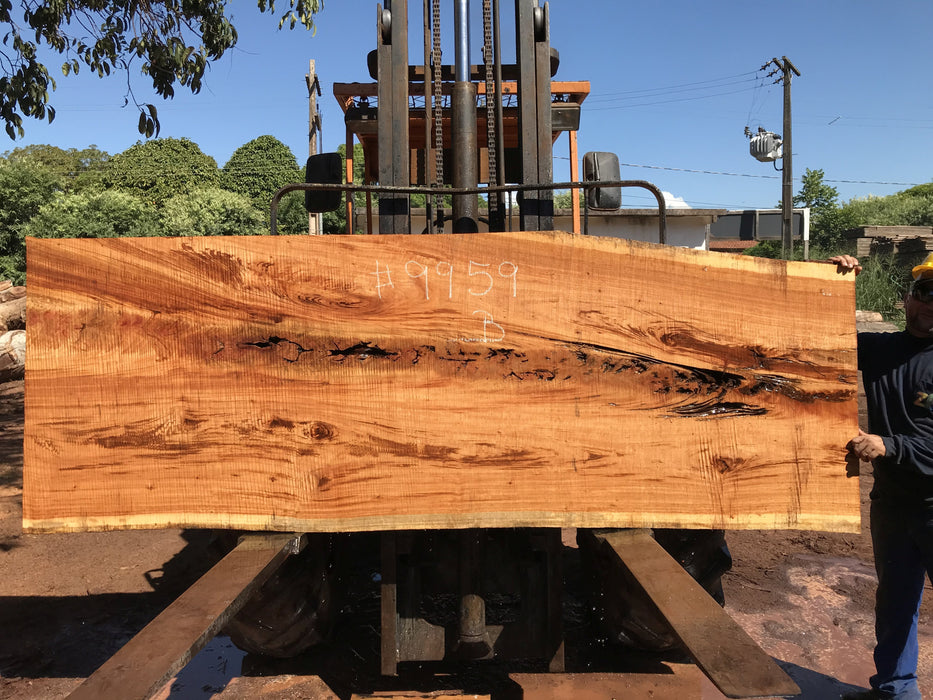 "Goncalo Alves / Tigerwood #9959 - 2-1/4"" x 34"" to 39"" x 110"" FREE SHIPPING within the Contiguous US. - Big Wood Slabs"