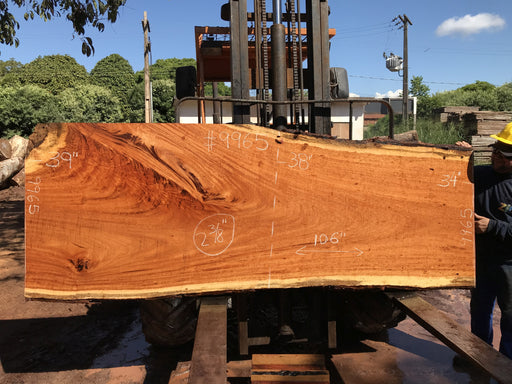 "Goncalo Alves / Tigerwood #9965 - 2-3/8"" x 34"" to 39"" x 106"" FREE SHIPPING within the Contiguous US."