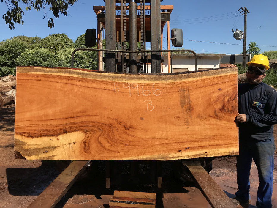 "Goncalo Alves / Tigerwood #9966 - 2-1/4"" x 36"" to 39"" x 92"" FREE SHIPPING within the Contiguous US. - Big Wood Slabs"